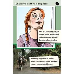 Anne of Green Gables conventional level 6 graphic novel